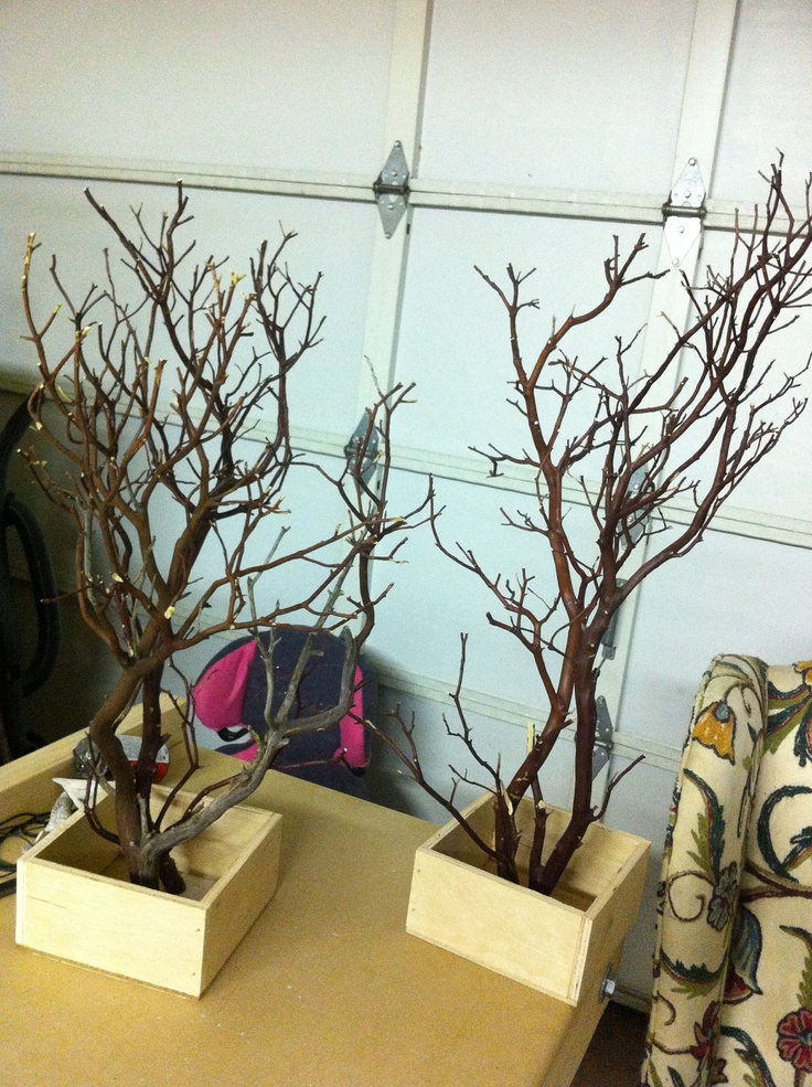 Shipped - 12 DIY manzanita tree Centerpiece. $35.50, via Etsy.