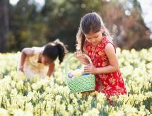 Easter egg hunt - Ariel Skelley/Getty Images