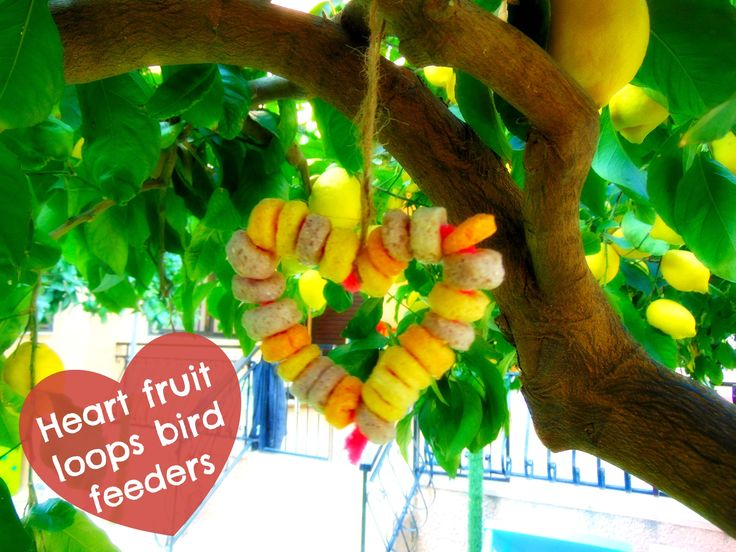 After exploring and of course half of them ended up in our mouths, we made heart shaped fruit loops bird feeders and hang them up in our trees for the birdies to come and eat them!