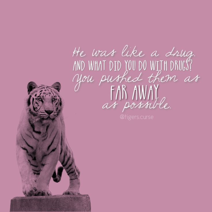 colleenrayhouck tigers curse quote tigerscurse on ig