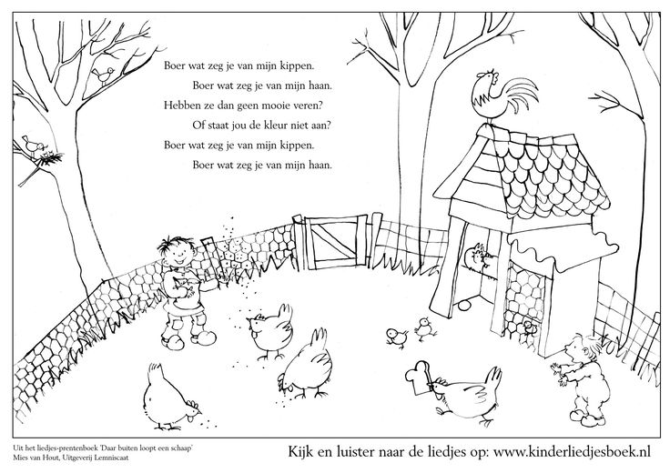 liedje Boer wat zeg je van mijn kippen