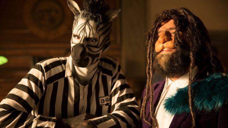 capital cities kangaroo court zebra - Google Search