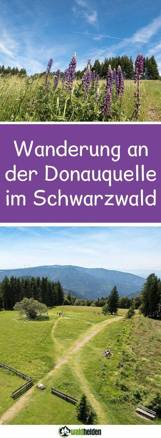 1 Millionen Sterne Unterkunft – Glamping im Schwarzwald – Places and Pleasure – Der Reise- und Genussblog