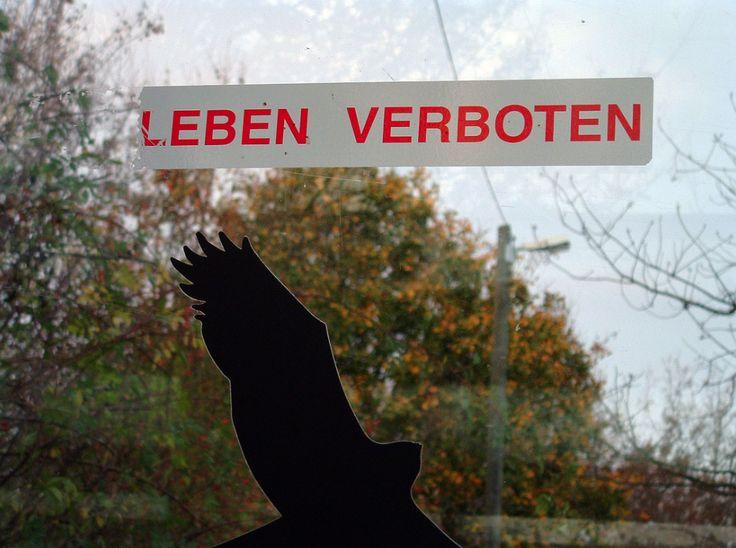Le otto leggi tedesche più assurde, anacronistiche e inverosimili in vigore in Germania. Dal trapano alla bicicletta, passando per il mandato dello spazzacamino