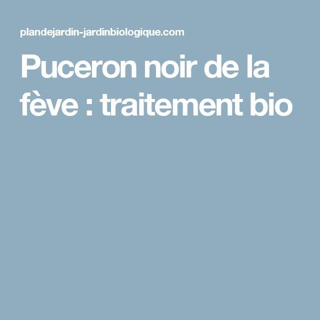 Puceron noir de la fève : traitement  bio