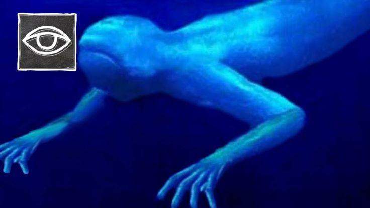 Leven er Aliens in onze oceanen!? - Strikt Geheim