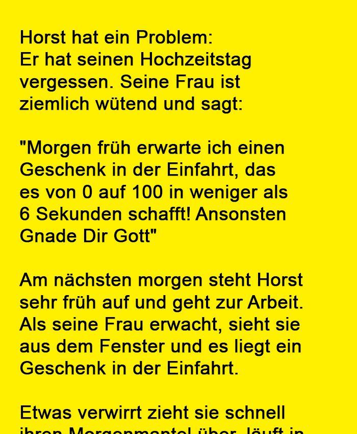 Niemals den Hochzeitstag vergessen! Horst hat ein Problem: Er hat seinen Hochzei…