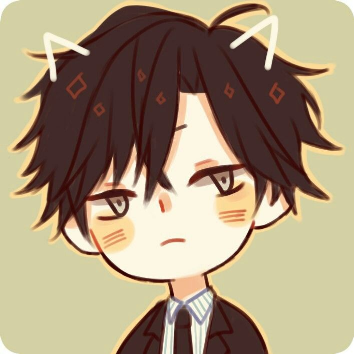 Pictures Of  Holding Jumin S Cat