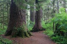 10 Things to do in Washington State