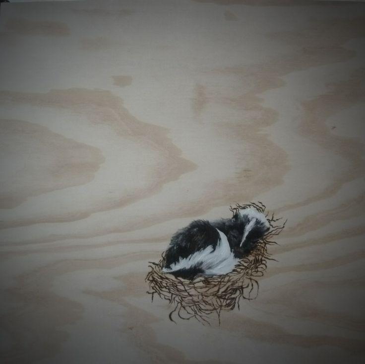 Skunk Babe in Nest