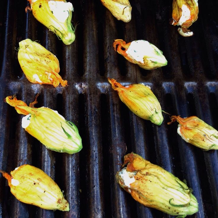 Grilled Stuffed Squash Blossom Recipe