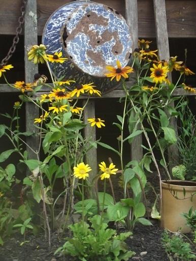 Graniteware & flowers