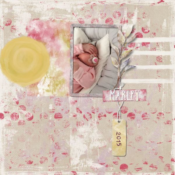 Renewal - Credtis: Renewal Paper Pack by Amy Wolff, Renewal Elements by Amy Wolff and Renewal Alpha by Amy Wolff.