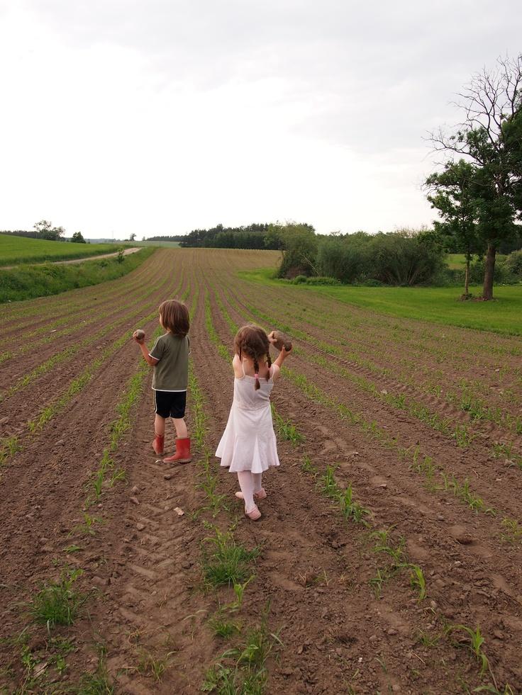 Hyvää huomiselle:Luomuviljely perustuu luonnon kunnioittamiseen ja luonnonvarojen kestävään hyödyntämiseen. Ihmisten hyvinvointi on riippuvainen luonnon tarjoamista palveluista, joita ovat esimerkiksi puhdas juomavesi ja hengitysilma, luonnonvarat sekä viljelykasvien pölytys. Luomussa niistä pyritään pitämään erityisen hyvää huolta, jotta ne säästyisivät seuraavillekin sukupolville.