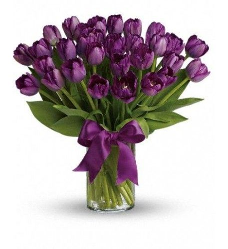 Tulips this tantalizing need no decoration! Celebrate a spring birthday, send your love, or simply let someone know you 're thinking of them with this stunning monochrome bouquet. Presented in a clear cylinder vase, the minimalist gift appeals to purple-lovers, tulip-devotees and those with a more elegant and simple sense of style.Ten deep purple tulips are gathered into a simple cylinder vase that 's tied with a bow.