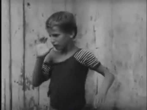 Documentário Em Nome da Razão ( Nos Porões da Loucura)