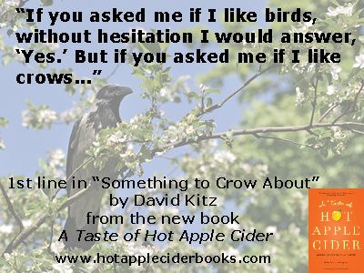 A remarkable encounter with a crow speaks deeply to our human needs. From the book A Taste of Hot Apple Cider. http://thatslifecommunications.com/books/taste/