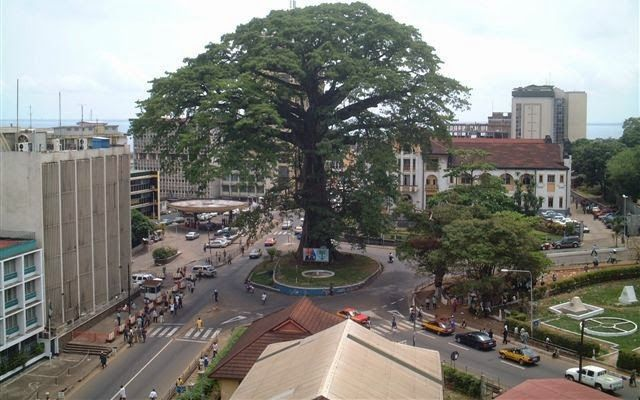 Freetown's giant cotton tree, national symbol of Sierra Leone and a landmark in the capital. The story goes that the tree started life as a young sapling when settlers came to Freetown in 1787. #africa #travel #city #tree