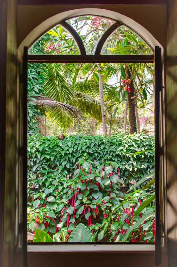 Window frame looking out on to tropical gardens in south Goa, India. To book or enquire: https://www.tripzuki.com/hotels/vivenda-dos-palhacos-goa/