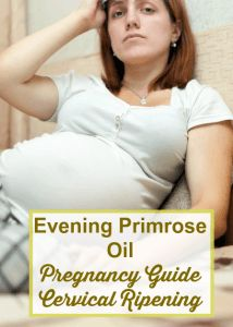 Safety and Precautions of using Evening Primrose Oil in Pregnancy For Dilation & Cervical Ripening