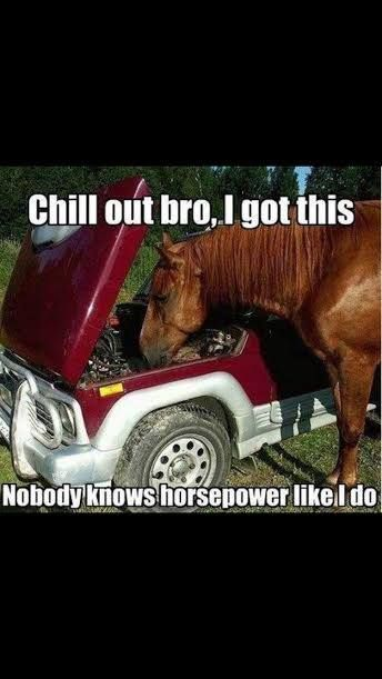 Just some humor! | Whether you're interested in restoring an old classic car or you just need to get your family's reliable transportation looking good after an accident, B & B Collision Corp in Royal Oak, MI is the company for you! Call (248) 543-2929 or visit our website www.bandbcollisio... for more information!