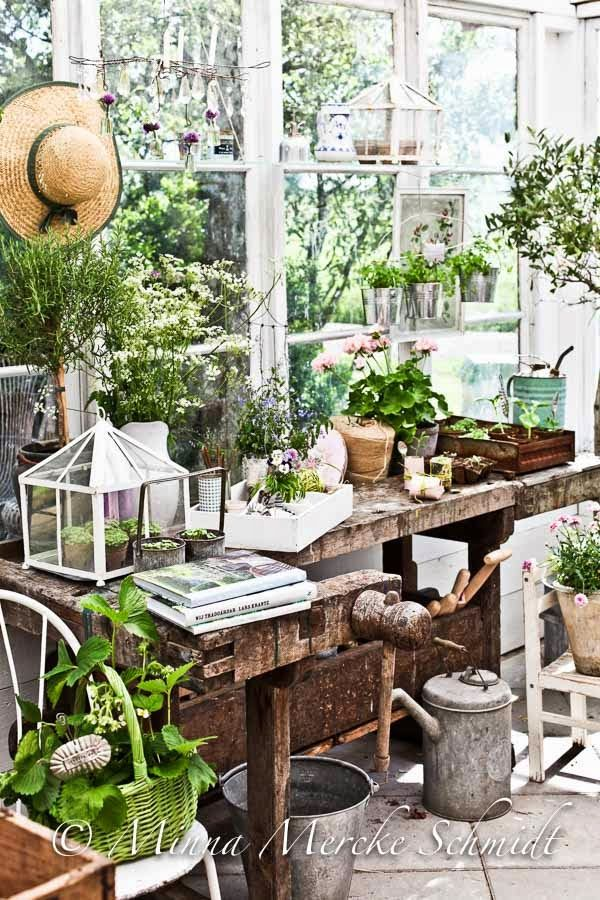 This is my potting room, garden catalogue reading room, my get away room, my sanctuary.......