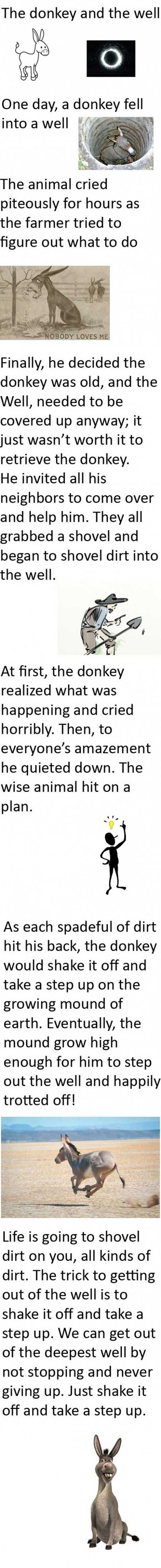 ONE DAY, A DONKEY FELL INTO A WELL..