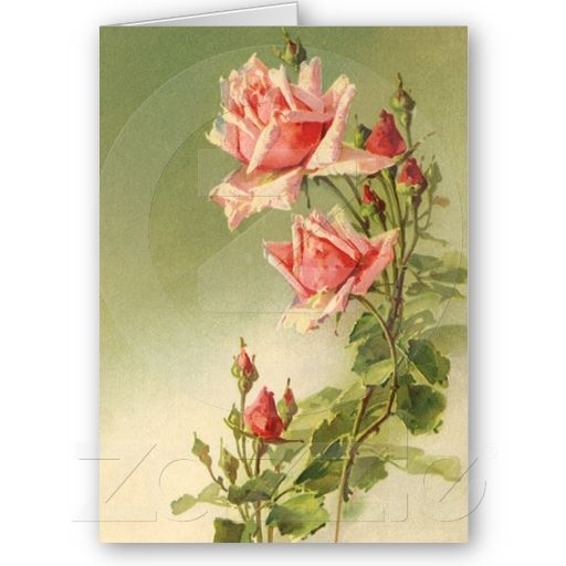 40 Best American Stationery Gifts Images On Pinterest: 17+ Images About Vintage Greeting Cards On Pinterest