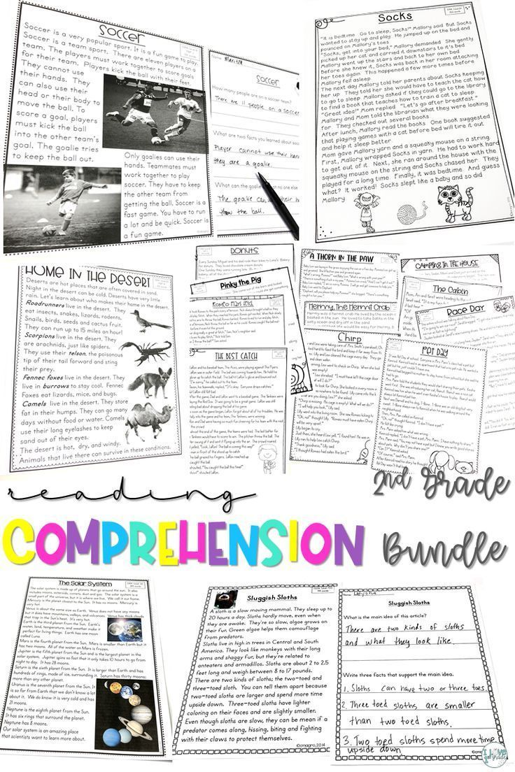 - Reading Comprehension Passages & Questions 2nd Grade BUNDLE