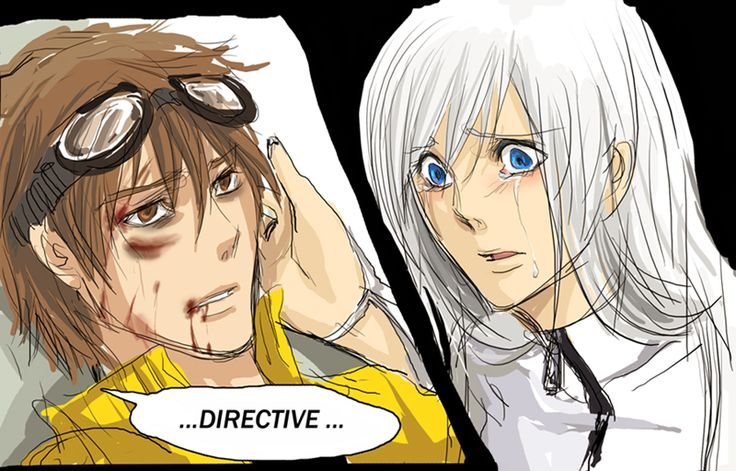 """ Directive "" by SchifferCake.deviantart.com on @deviantART"