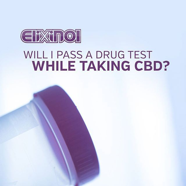CBD is not only a non-priority of cannabis drug testing, but has a different molecular structure to THC, so a false positive is unlikely. It is not expected that taking the recommended dose of a hemp extract containing less than 1% THC will give a positive result. #Hemp #CBD #CBDOIl #HempCBD #hempHealth #Cannabis #elixinol #Healthy #Vegan    #Regram via @elixinol