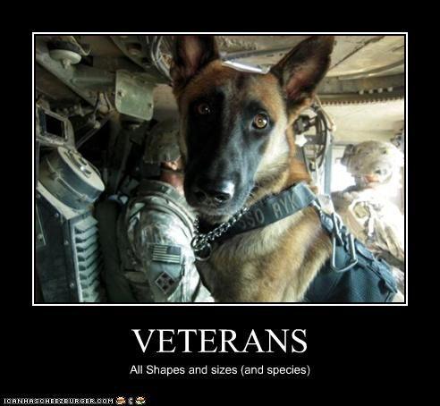 Veterans :) THANK YOU!!!