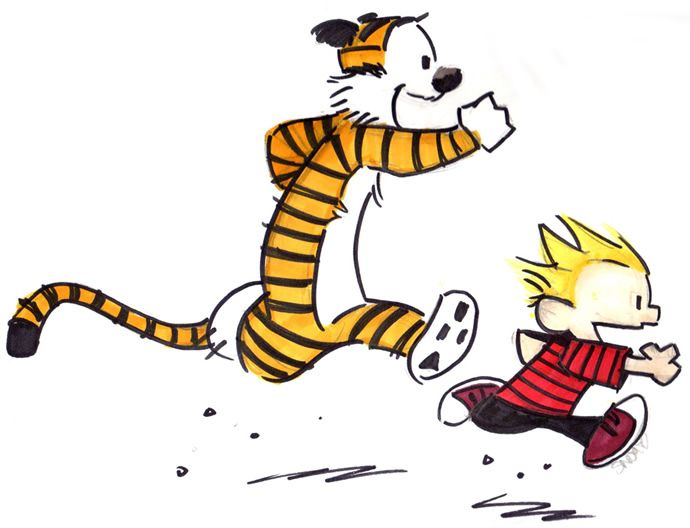 calvin and hobbes collection pdf