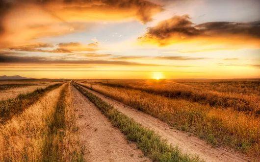PRANOSTIKA NA NEDEĽU 12.3.: Ak je na Gregora prach, nie riedkô blato, prach ten je gazdovi milý ako zlato