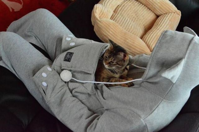 This Hoodie Has A Creepy Cat-Snuggling Pouch To Make Your Pets Hate You - The Frisky