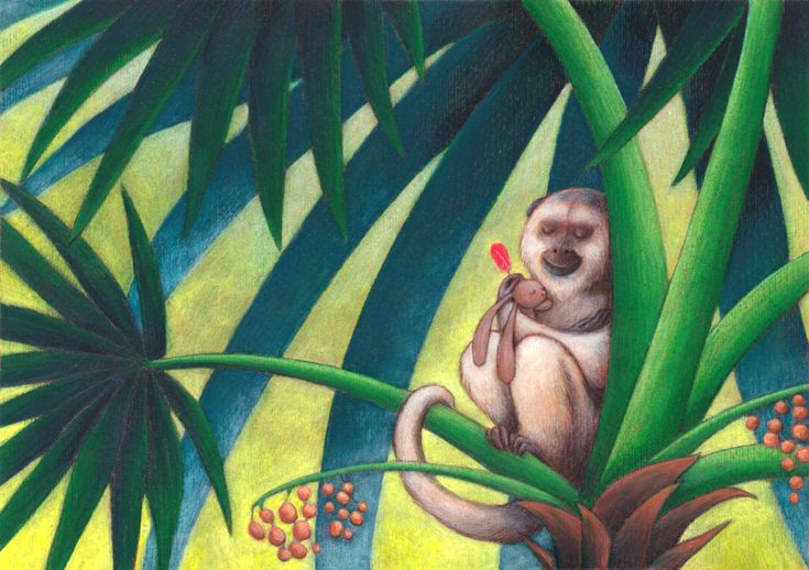 "Illustration from picture book ""Ciacio in Amazonia"" by Sarah Khoury, 2015"