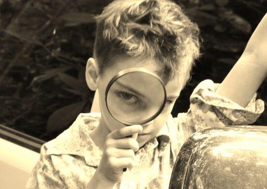 Queensland Homeschool Report, English, Year 2-3. 2012