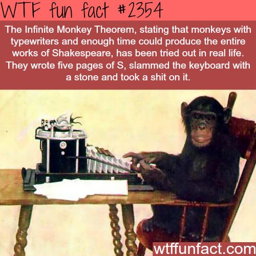 The infinite Monkey Theorem - WTF fun facts: Animals are smart...just not that smart lol