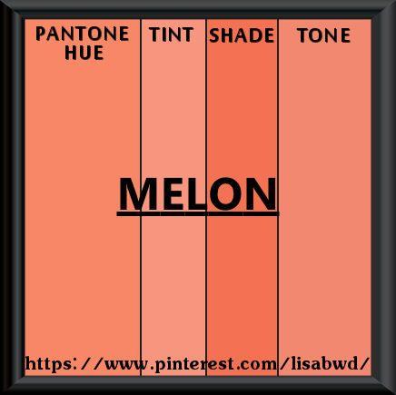 PANTONE SEASONAL COLOR SWATCH  MELON
