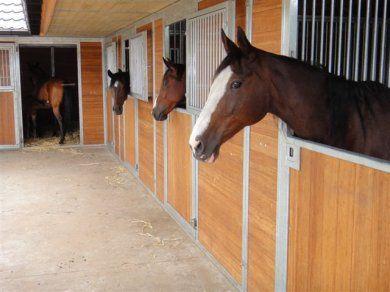 Paardenboxen en -stallen