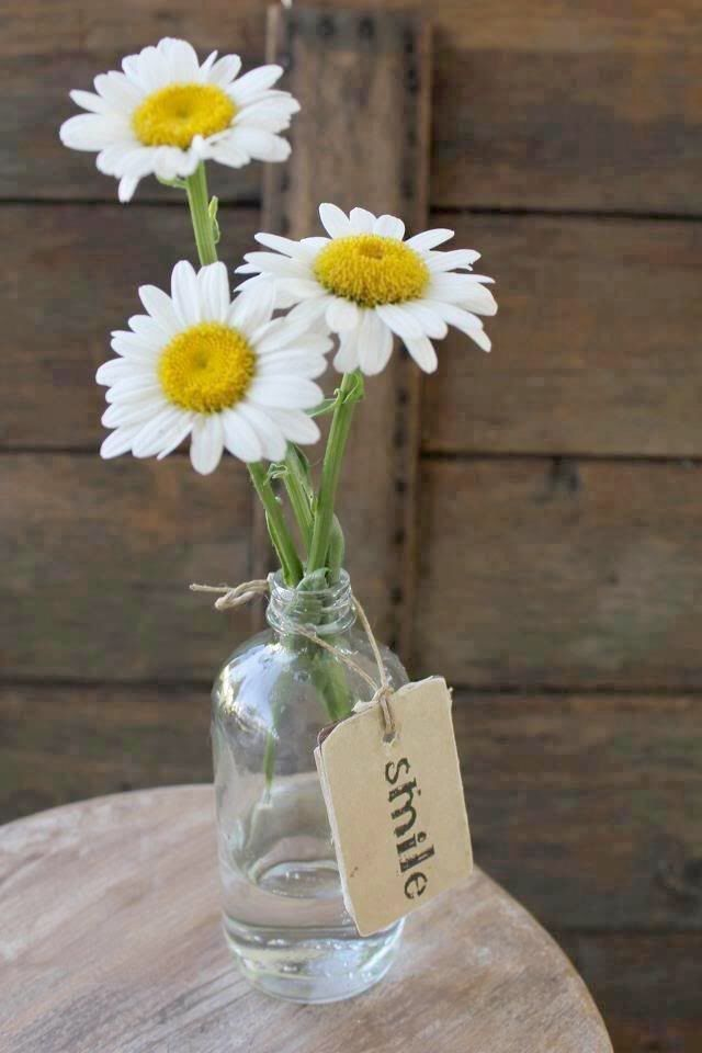 Daisy centerpieces reception pinterest beautiful