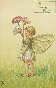 The Daisy Fairy  by Cicely Mary Barker (English illustrator 1895 - 1973)