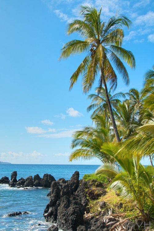 Thinking of Maui for a honeymoon? Check out this Maui honeymoon guide!