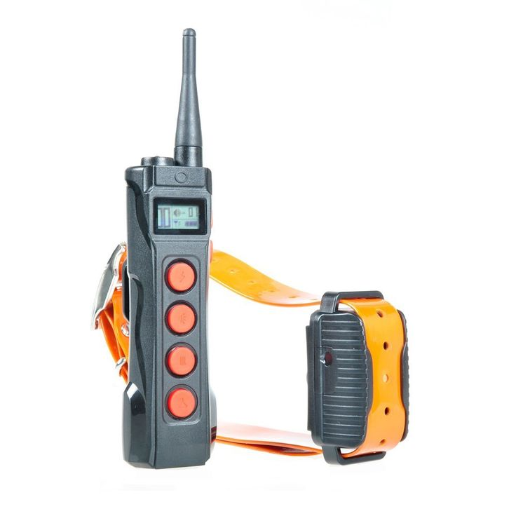 Aeteretk AT-919 Professional 1000M Remote Range Training Rechargeable Waterproof Shock Collar For Dogs Medium and Large -- Be sure to check out this awesome product. (This is an affiliate link and I receive a commission for the sales)