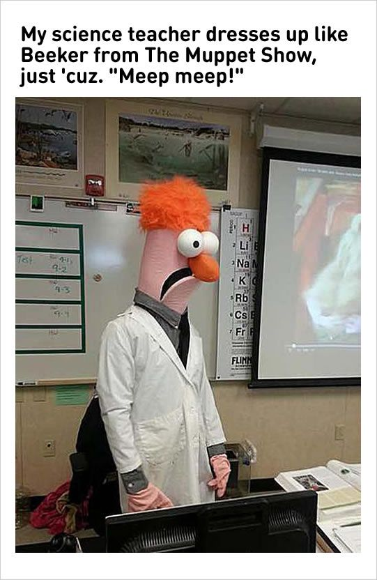 Pin By Sue On Memes Queen Teacher Humor Funny Muppets