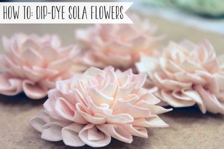 How to dip-dye sola wood flowers. #diy #wedding #flowers