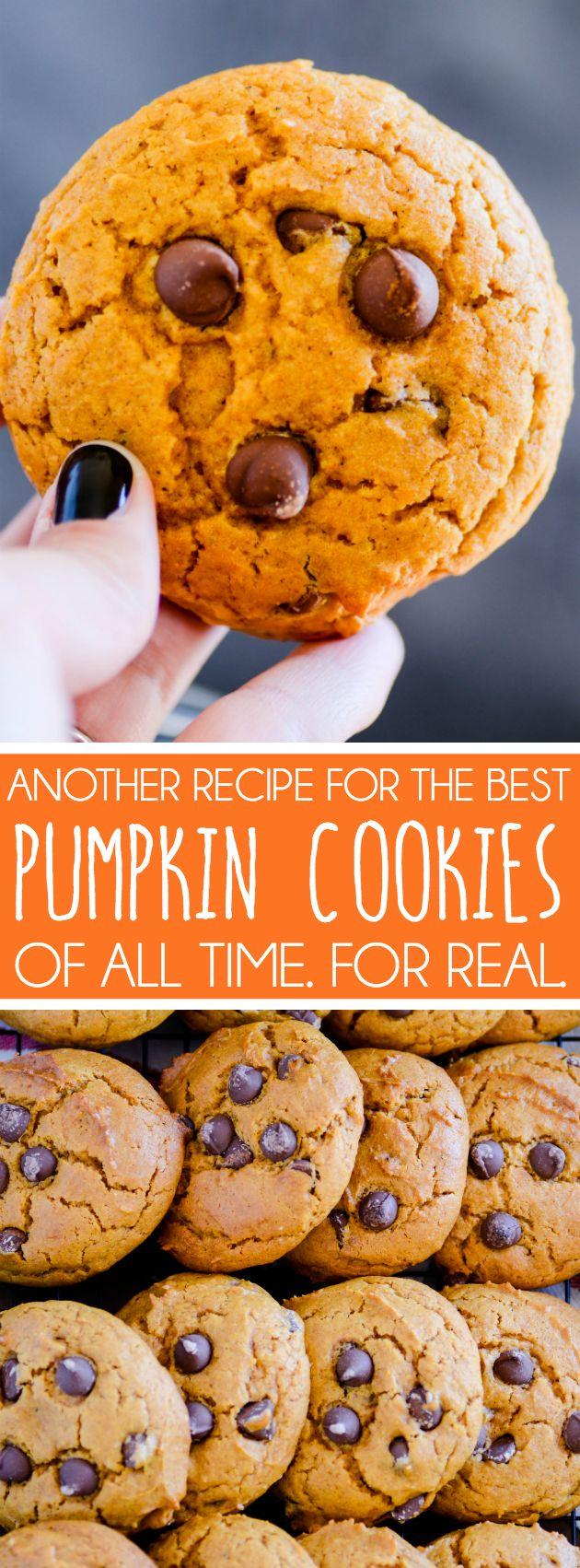 Pumpkin Chocolate Chip Cookies II http://www.somethingswanky.com/pumpkin-chocolate-chip-cookies-ii/?utm_campaign=coschedule&utm_source=pinterest&utm_medium=Something%20Swanky&utm_content=Pumpkin%20Chocolate%20Chip%20Cookies%20II