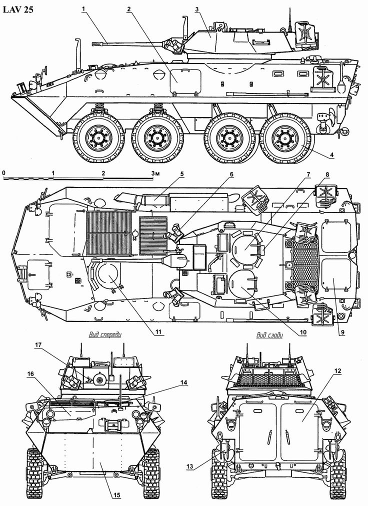 LAV-25 Blueprint - Download free blueprint for 3D modeling
