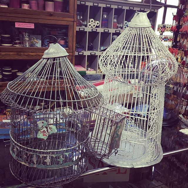 Still more treasure 2 antique bird cages originally from Argentina $180 each or $300 for the pair! #luccellomelbourne #antiquebirdcages #shabby #vintage #lovethembuttheyhavetogo
