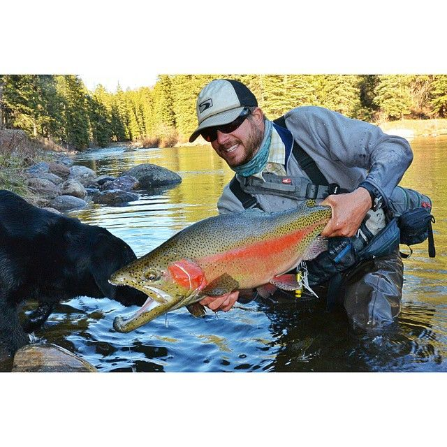 112 best images about durango outdoor sportsman and for Fishing in durango co
